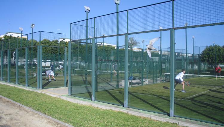 Celebrado el Torneo de promoción de las pistas de pádel del Campus de Jerez
